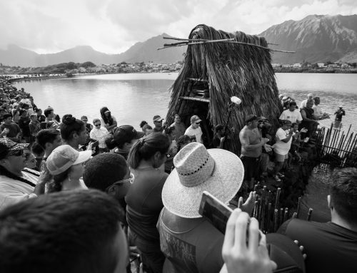 Get to Know Paepae O He'eia | Hawaiian Cultural Education Nonprofit